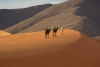 Desert Tours :Marrakech to Fez and Sahara Desert 3 days