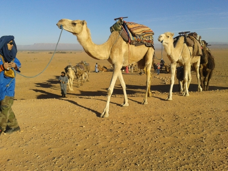 Popular Desert Tours: Marrakesh Tuareg Desert : 5 days/ 4 Nights