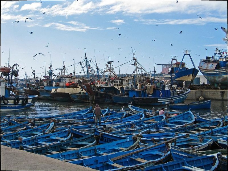Fes day trip :Essaouira Excursion